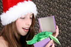 Christmas Beauty Royalty Free Stock Photography