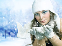 Christmas Beauty Blowing Snow Stock Image