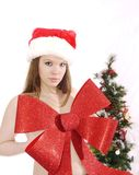 Christmas Beauty Bow Royalty Free Stock Image