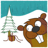 Christmas Beaver Royalty Free Stock Image