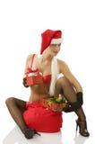 The christmas beg Stock Image