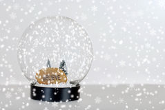Christmas believe snow globe Stock Image