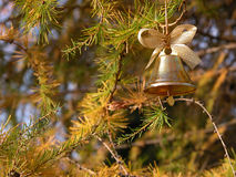 Christmas bell. On the branches larch tree Royalty Free Stock Images