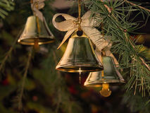 Christmas bells. On the branches larch tree Royalty Free Stock Photos