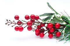 Christmas berries decoration. Isolated. White background Royalty Free Stock Photo