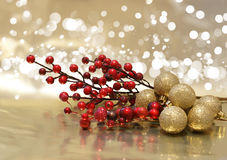 Christmas berries Royalty Free Stock Photography