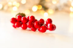 Christmas Berries Stock Images