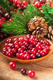 Christmas berries and spruce Royalty Free Stock Photos
