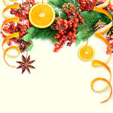 Christmas berries and spruce. Branch with cones and oranges Stock Photos