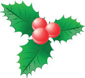 Christmas berry. Isolated Christmas red and green berry Royalty Free Stock Image