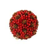 Christmas berry Stock Image