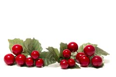 Christmas berry branches. Different Christmas berry branches isolated on a white background stock images
