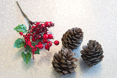 Christmas berry decorations and pine cones Stock Image