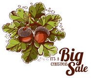Christmas big sale oak leaves and acorns Royalty Free Stock Images