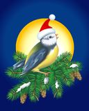 Christmas Bird Royalty Free Stock Photography