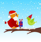 Christmas bird Stock Photos