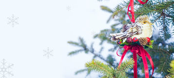 Christmas bird for card on the white background Royalty Free Stock Image