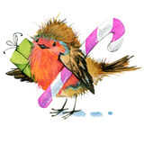Christmas bird and Christmas background. watercolor illustration Stock Photos