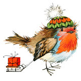 Christmas bird and Christmas background. watercolor illustration Stock Image