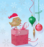 Christmas bird and a gift box Stock Photo