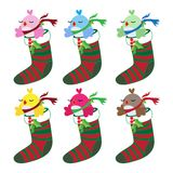 Christmas bird set in socks Royalty Free Stock Images