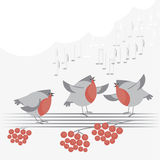 Christmas bird song. Vector illustration of Christmas bird song Royalty Free Stock Photos