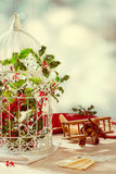 Christmas Birdcage Stock Images