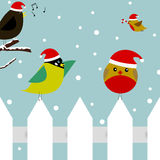 Christmas birds. Vector christmas scene with two birds sitting on a picket fence, one bird flying with a candy cane, and a bird singing christmas carols Stock Photo