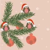 Christmas birds. Funny funky birds - christmas background Stock Illustration