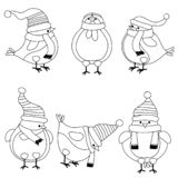 Christmas birds collection for coloring book vector illustration