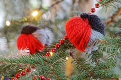 Christmas birds decorations in the christmas tree Royalty Free Stock Photos