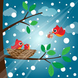 Christmas birds family Royalty Free Stock Photography
