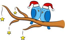 Christmas birds Stock Photos