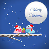 Christmas birds with present Royalty Free Stock Images
