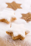 Christmas Biscuit Stock Image