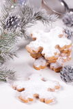 Christmas biscuits. Royalty Free Stock Images