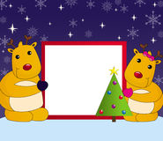 Christmas blank card. Two red nose reindeers are showing a blank card for christmas greetings or advice, in a snowy night background Royalty Free Stock Photography