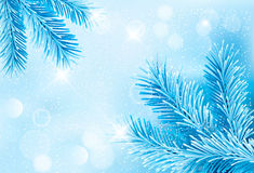 Christmas blue background with christmas tree bran. Ches and snowflakes Royalty Free Stock Image