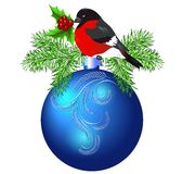 Christmas blue ball with bullfinch and spruce Royalty Free Stock Image