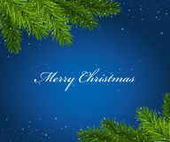 Christmas blue framework with fir tree branches Stock Image