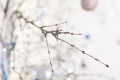 Christmas blue and silver decorations Royalty Free Stock Image
