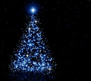 Christmas blue Tree Royalty Free Stock Photography