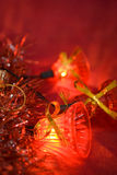 Christmas bluebell Stock Image