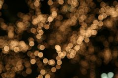 Christmas blur branches Royalty Free Stock Images