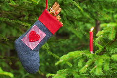 Christmas boot with gingerbreads Royalty Free Stock Photo