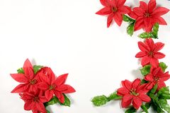 Christmas border. Flower and leafs for holidays Royalty Free Stock Photography