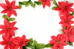 Christmas border. Flower and leafs for holidays Stock Photo