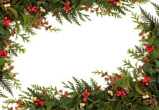 Free Christmas Border Royalty Free Stock Photo - 26877355