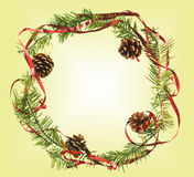 The Christmas Border with cones Royalty Free Stock Photography