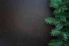 Christmas Border. Fir tree branches on dark wooden background. Top view. Copy space royalty free stock photo